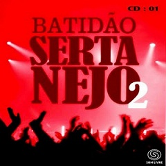 cd Coletanea Batidão Sertanejo Vol 2 2011
